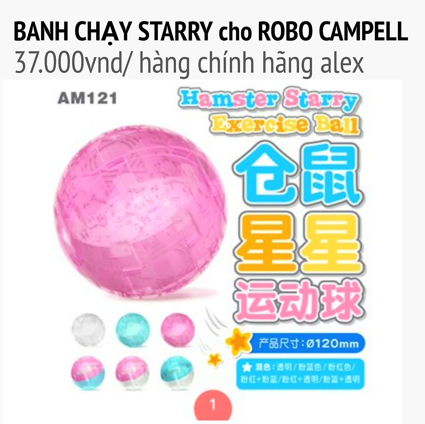 banh chạy steery size robo campell alex