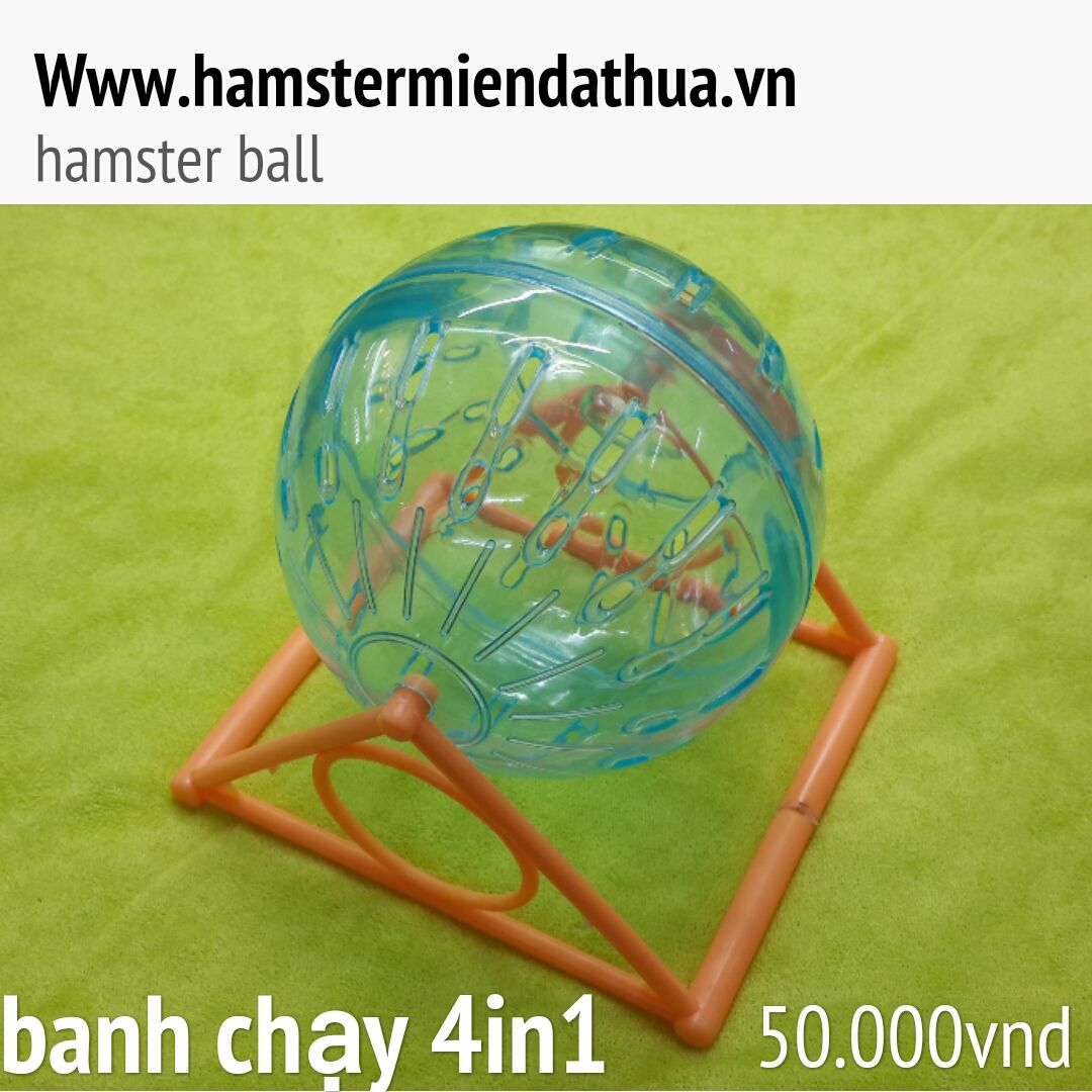 banh chạy hamster 4in1