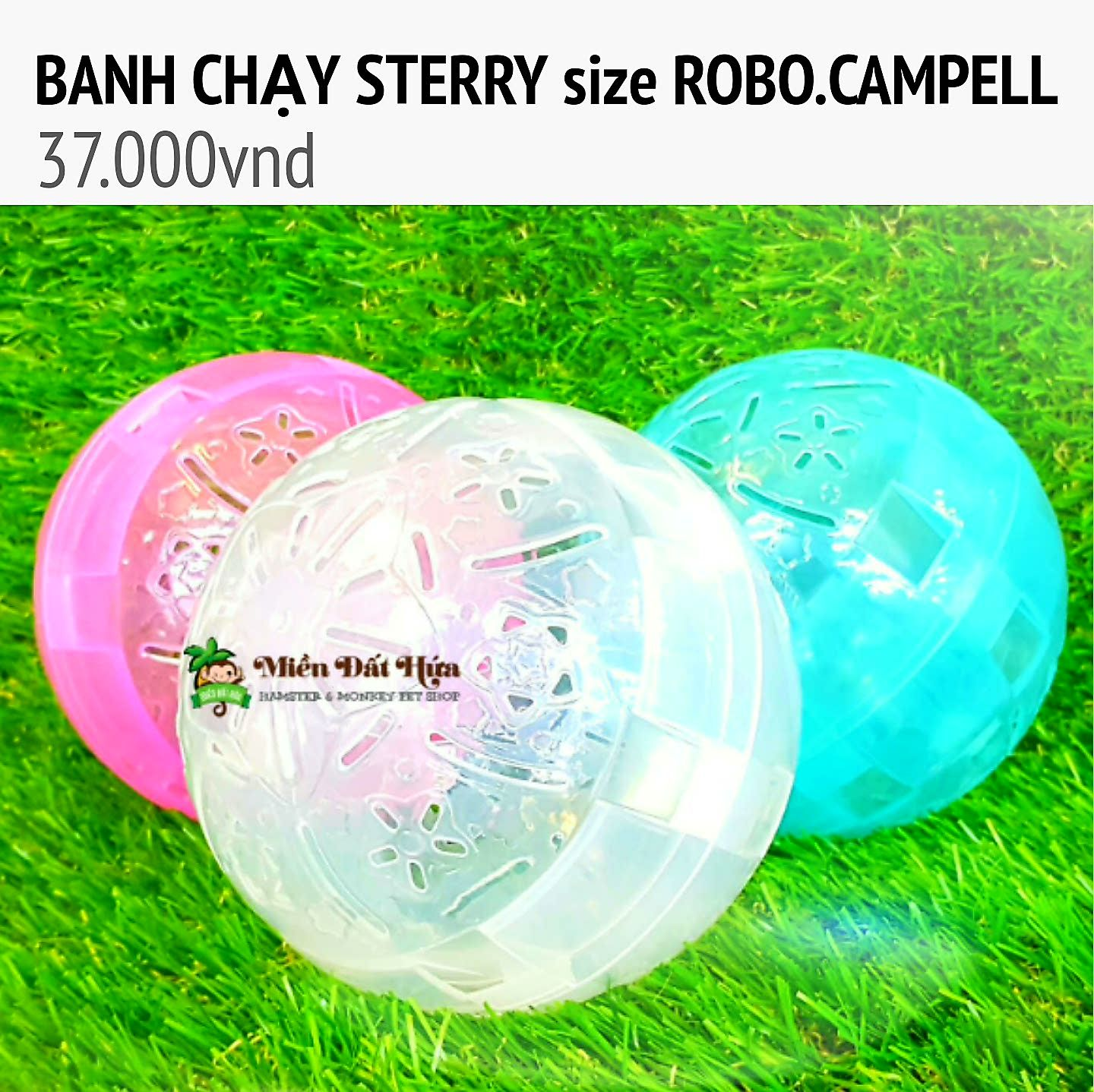 banh chạy steery size robo campell
