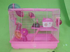 Lồng hamster ống nối cao