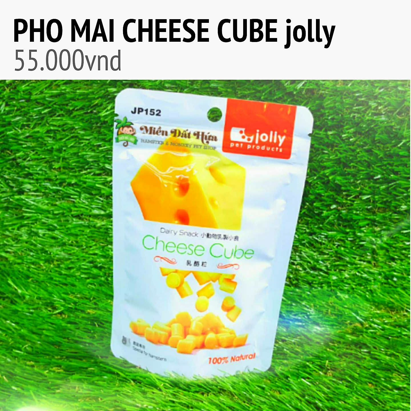 cheese cube jolly cho guinea pig,thỏ,hamster
