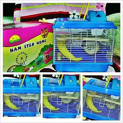 lồng hamster mier pet 1 tầng