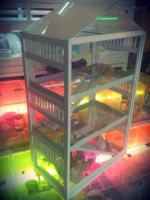 CHUỒNG hamster PET WHITE 3 tầng