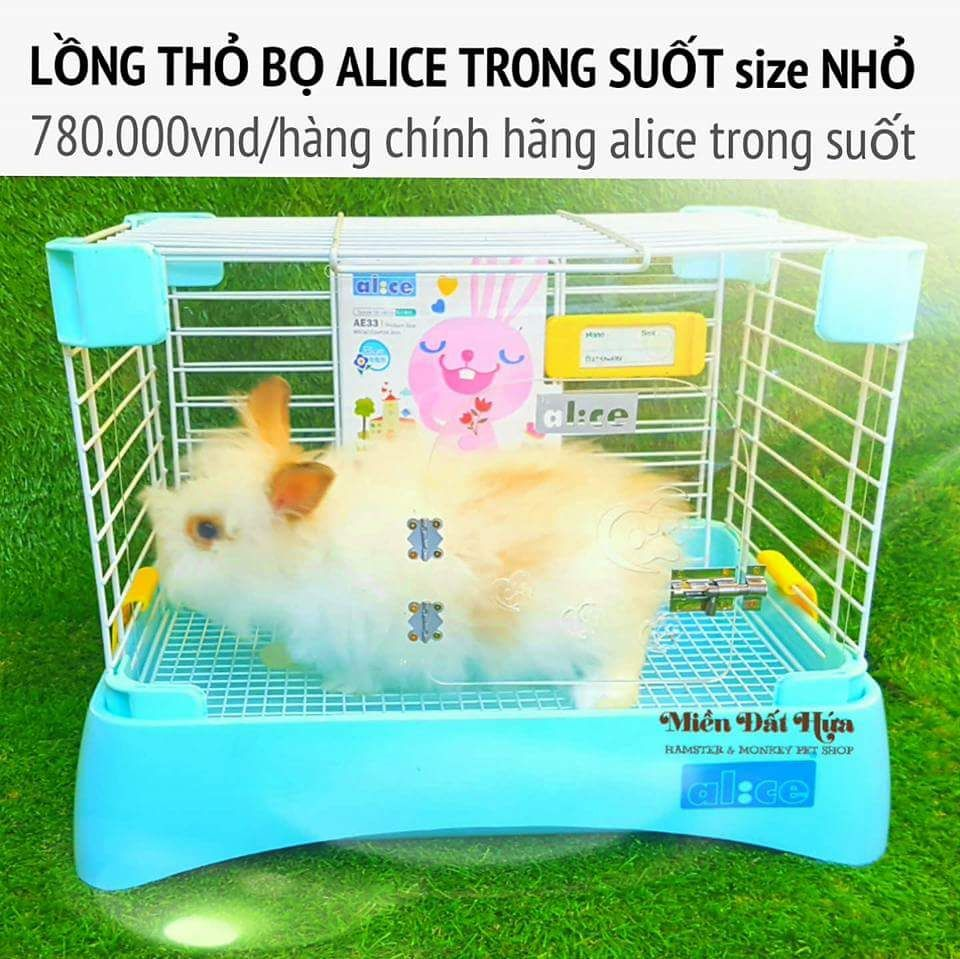 lồng thỏ bọ alice trong suốt  size nhỏ