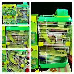 Lồng hamster mier-pet 3 tầng size trung